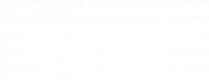 logo_borgonovo